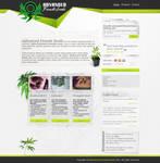 Advanced Female Seeds Layout