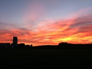 Prairie-nights's Profile Picture