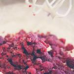 174 - Raspberries by CarlaSophia