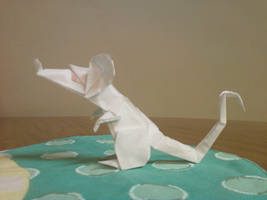 Rat by ginshun