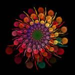 Fall Mums Bouquet