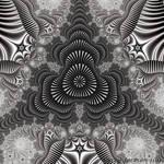 Grayscale Shells