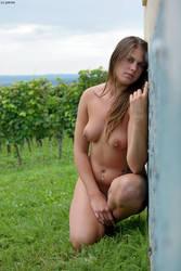 At the vineyard 2 by gb62da