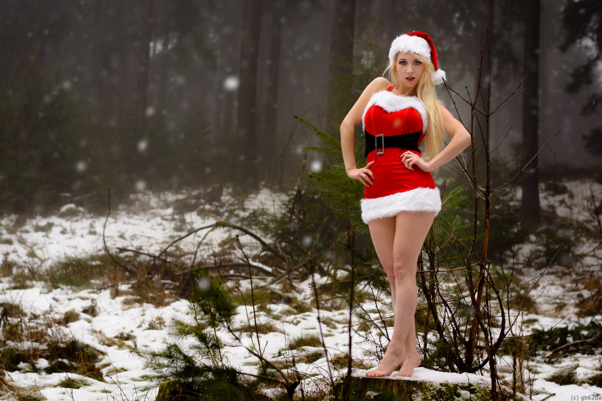 http://orig05.deviantart.net/63c3/f/2014/354/0/7/santa_claus__little_sister_by_gb62da-d8ai1c1.jpg