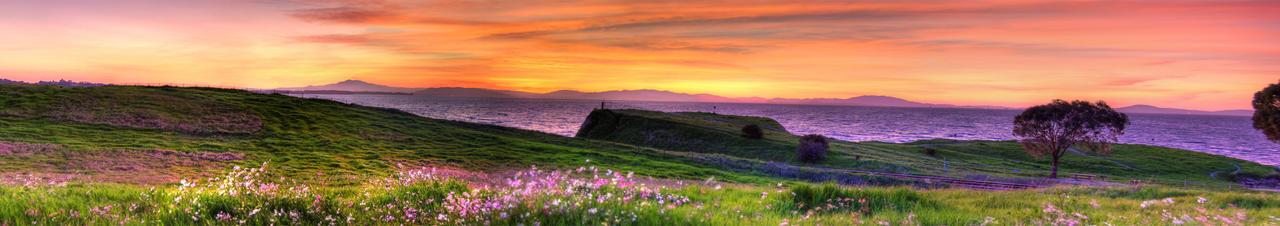 Grassy Shore Panorama by kory83