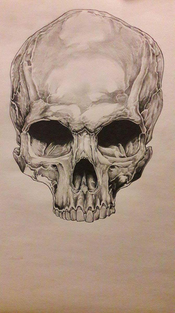 Skull by urbe