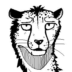 Cheetah by 2048Terrabit