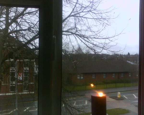 view from my bedroom window essay