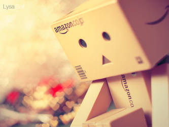 First Danbo by Lysa-Bell