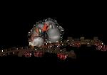 PNG Bird 2
