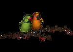 PNG Bird 3 by ThoArtIsPixel