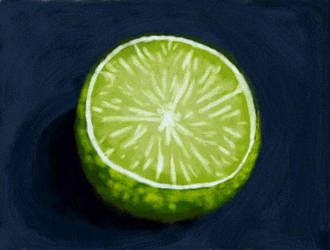 Lime-Still Life Painting Practice by Torchic1123