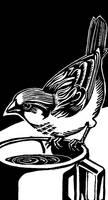 Sparrow, linocut