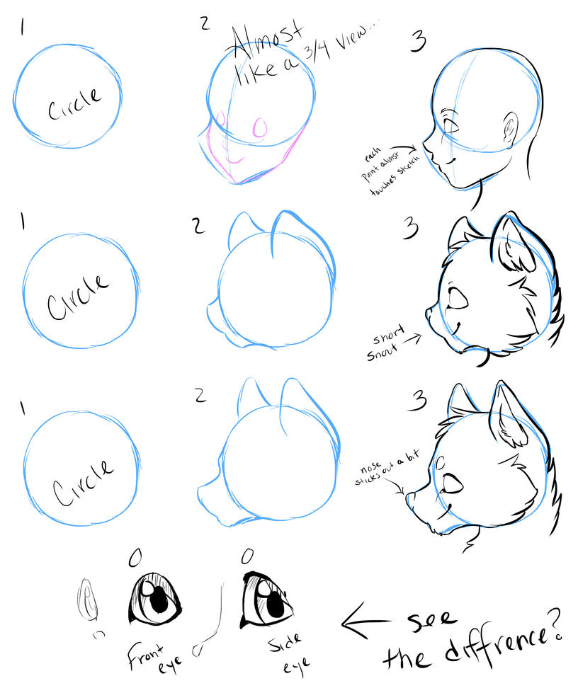 how to draw facesfrom the side