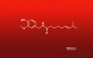 Alchemy Of Life - Spicy