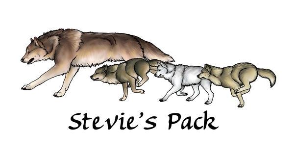 Stevie's Pack by ChiroOokami