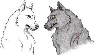 Wolves by ChiroOokami