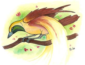 Bird Of Paradise by ChiroOokami