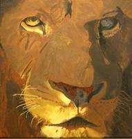 lion by xxx-ellie