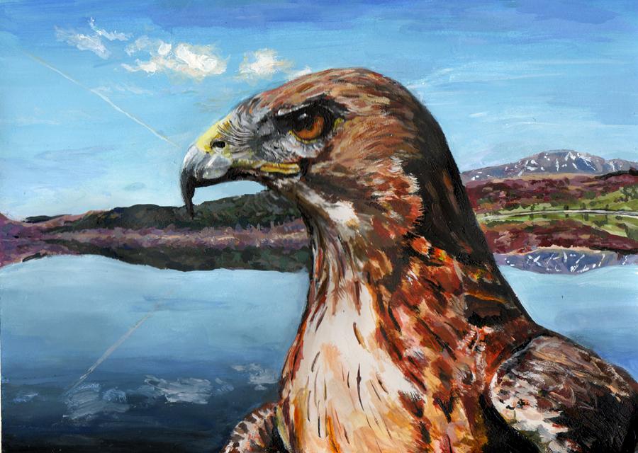 hawk -acrylic by xxx-ellie