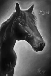 A Black Beauty by xxx-ellie