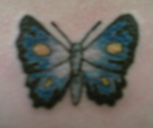 butterfly - butterfly tattoo