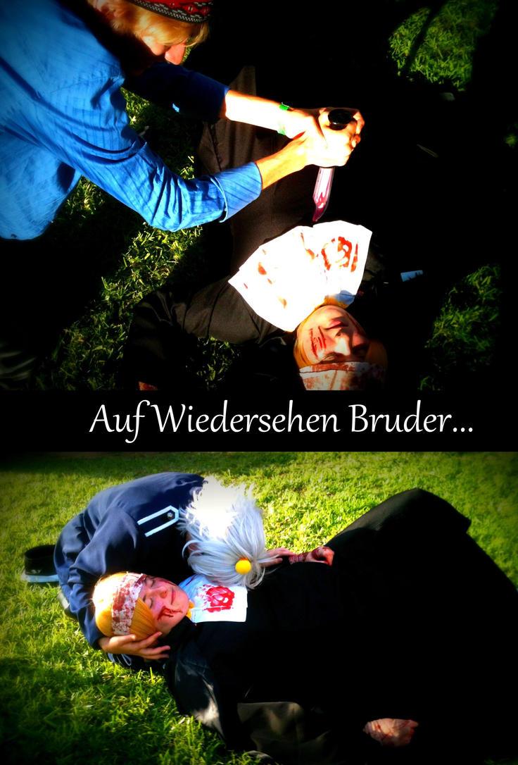 Auf Wiedersehen Bruder by Fallenbutterfly2