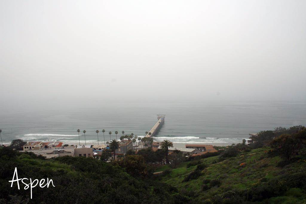San Diego 27 by Aspen287