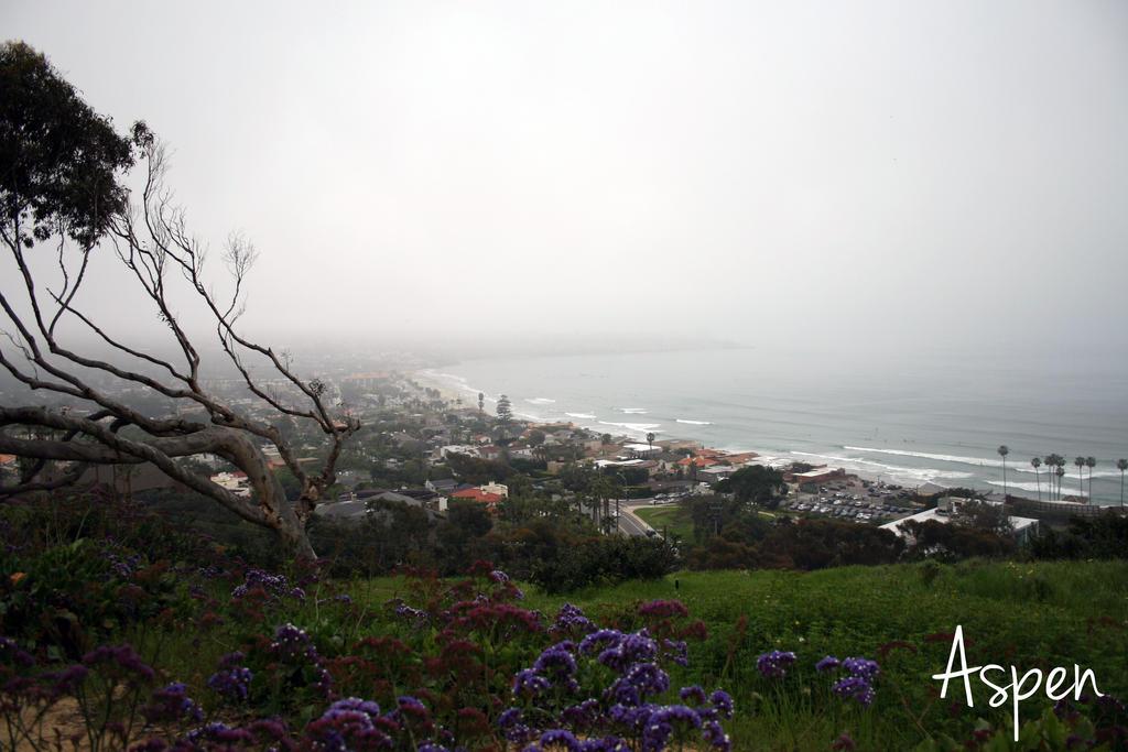 San Diego 28 by Aspen287