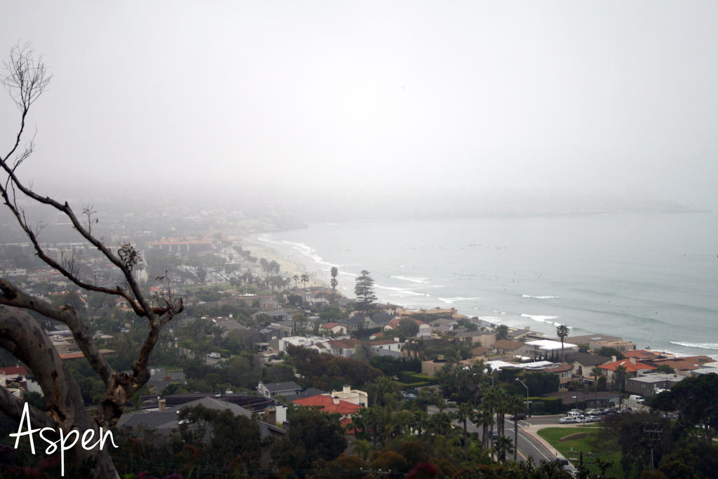 San Diego 29 by Aspen287