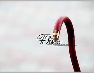 29a-2 by F5r-bladi