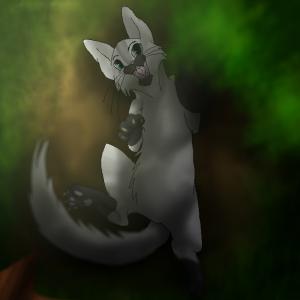 Silver-Pegasus's Profile Picture