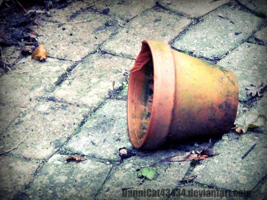 Fallen by DanniCat43434