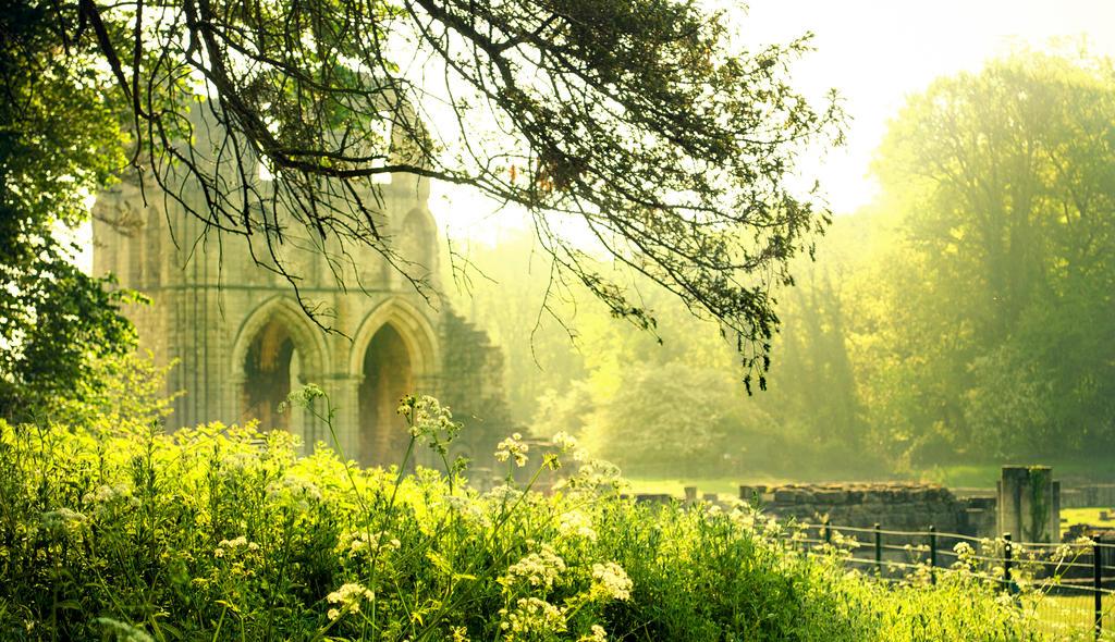 Roche Abbey by RoxShotz