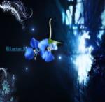 genisis flower