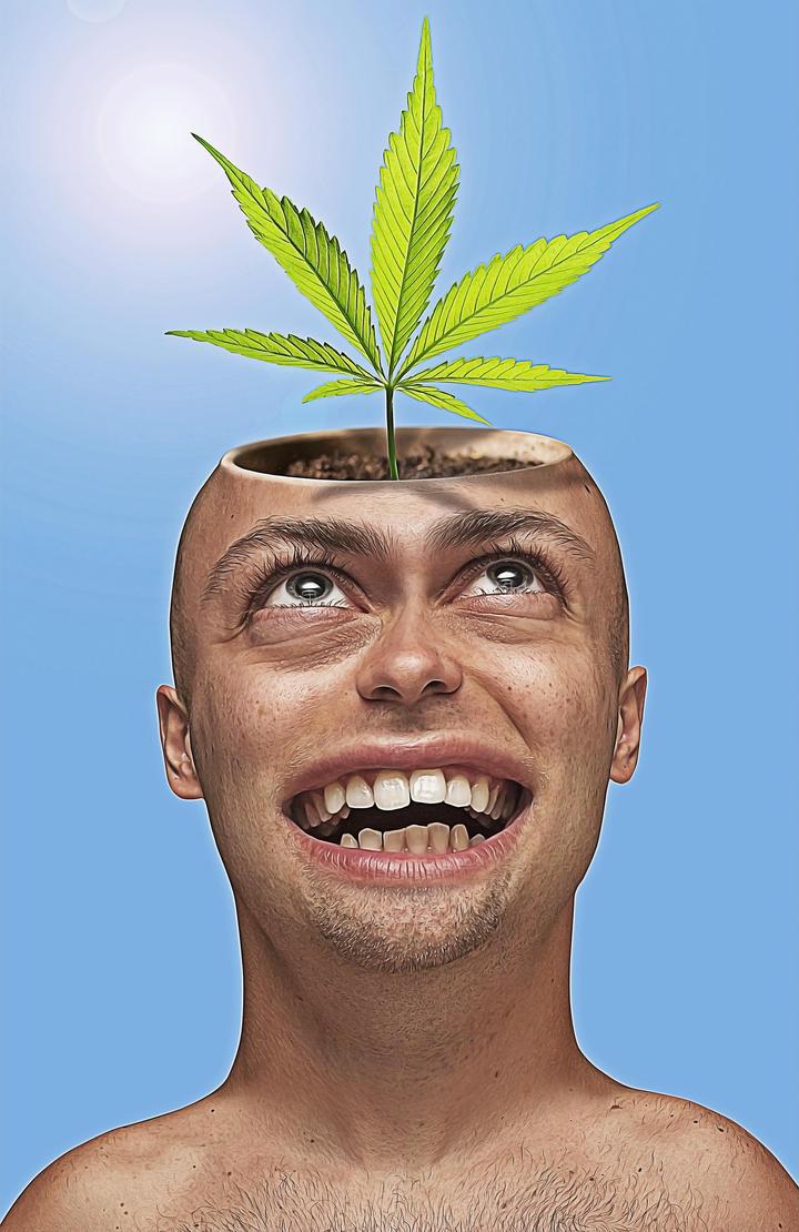 Pot Head by Reidy68