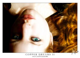 Copper Dreams II by neeta