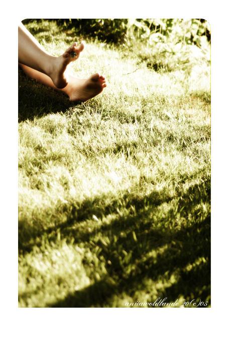 Summer Warmth I by neeta