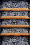 Rock And Wood Shelf
