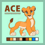Ace Reference Sheet 2017