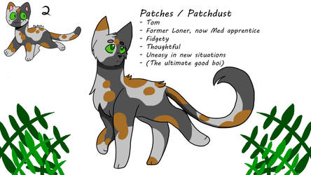 PatchDust