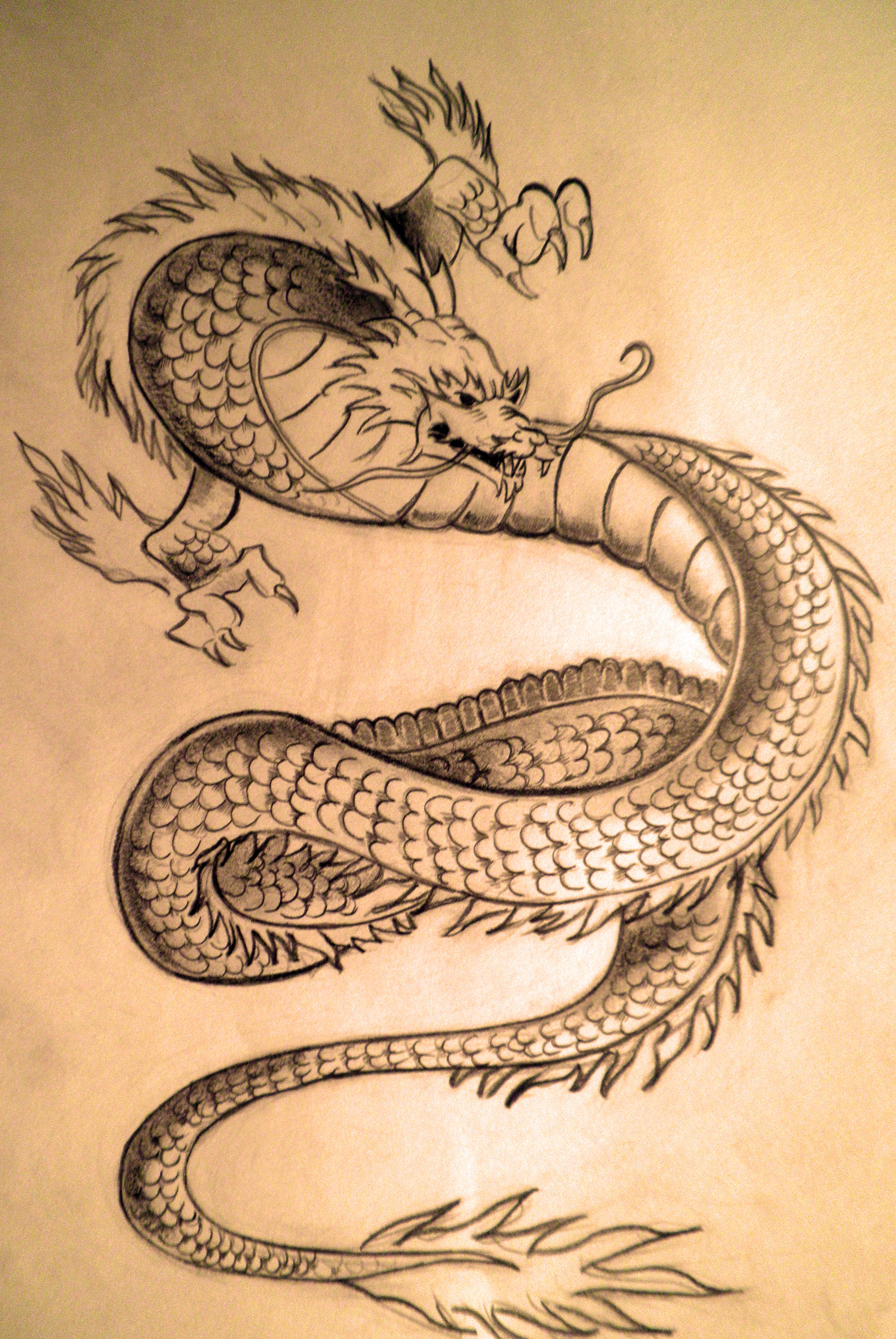 Japanese traditional dragon by rizb0 on deviantart for Japanese dragon painting
