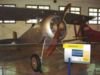 Nieuport 21E1 by Roddy1990