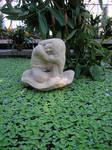 Indoor pond statue
