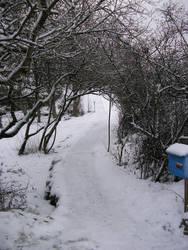 Winter road by Luna2-stock