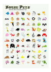 House Pets - 80 Animals