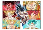 Evolution of Goku!