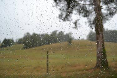 Through Rain