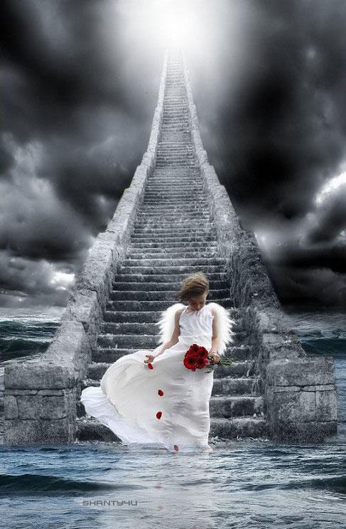 ...:: angel ::... by shanty4u
