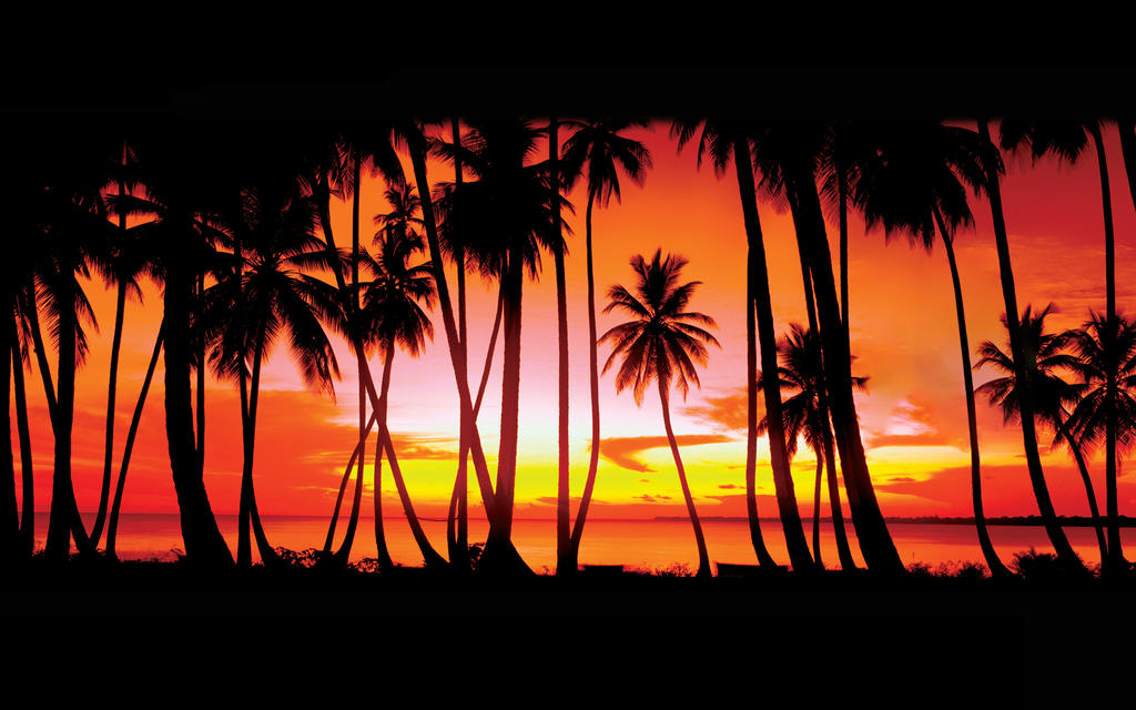 Gta Vice City Intro Palms Without Logo By 7works On